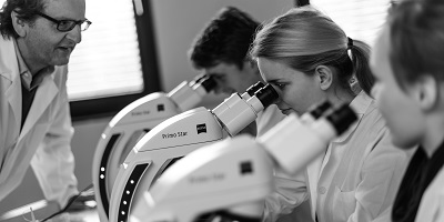 men and women using microscopes